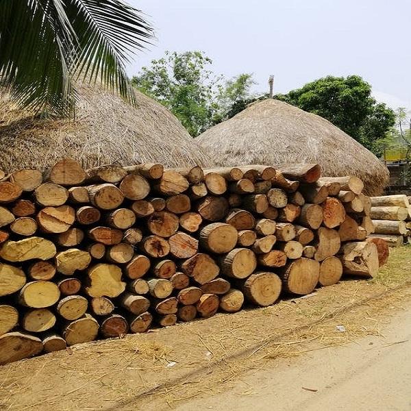 Bulk Firewood